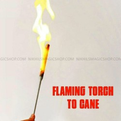Flaming torch to cane
