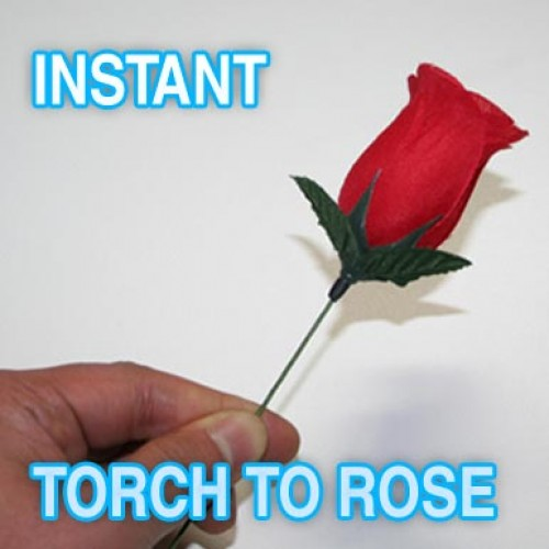 Instant Torch To Rose
