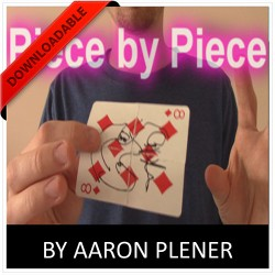 Piece by Piece by Aaron Plener (VIDEO DOWNLOAD)