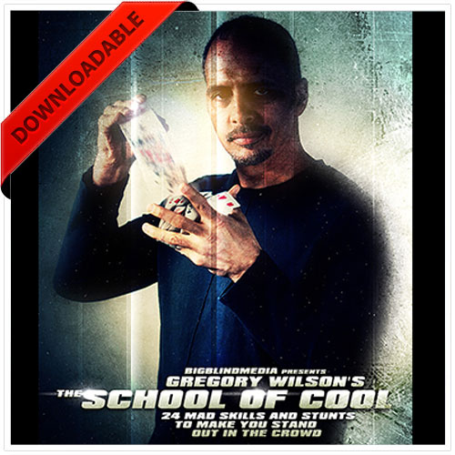 The School of Cool by Greg Wilson (VIDEO DOWNLOAD )