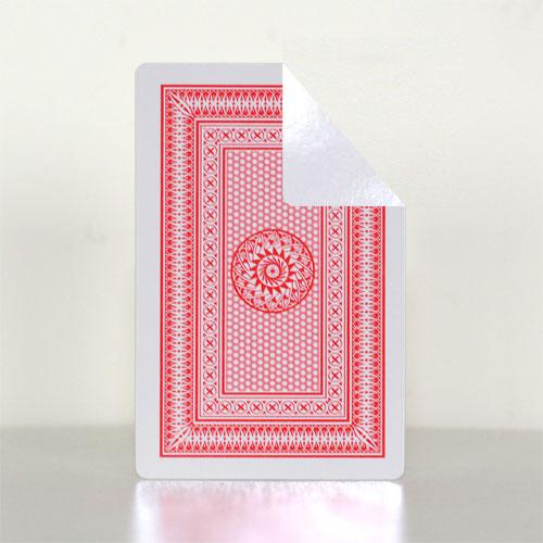 Indian Blank Face Card Deck