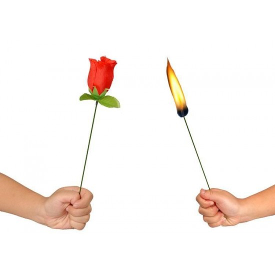 Torch to Rose