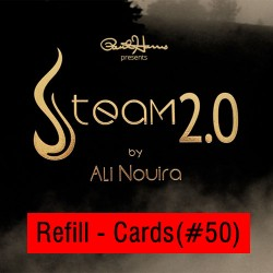 Steam 2.0 Refill Cards (50 ct.) by Paul Harris
