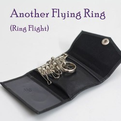 Another Flying Ring (Ring Flight)