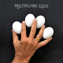 Multiplying Eggs