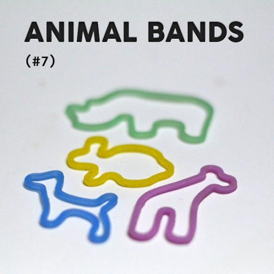 Animal Bands