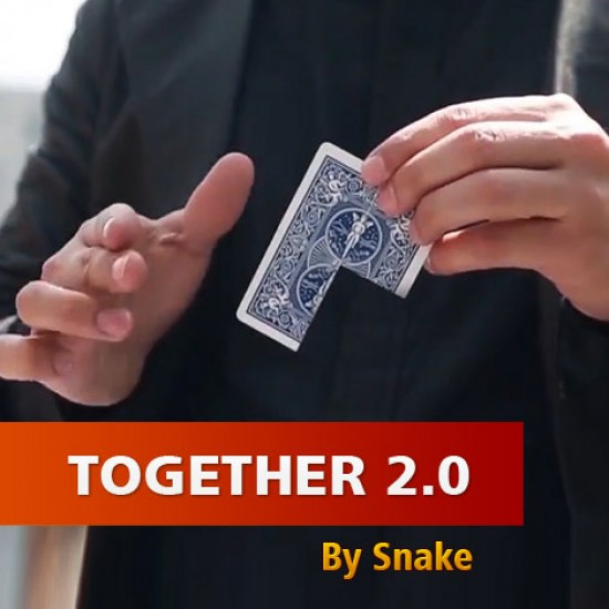 Together 2.0 (Red) by Snake