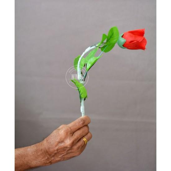Silk To Rose Plus