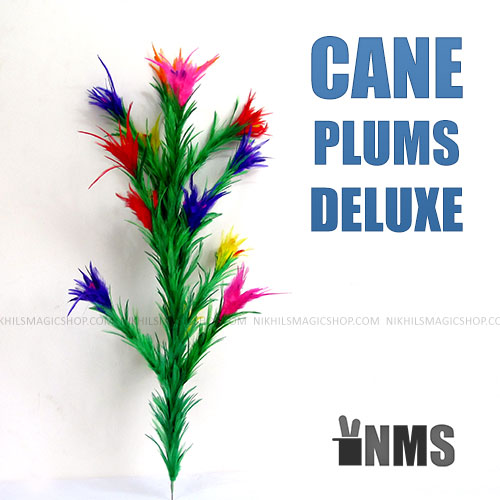Cane Plums Deluxe