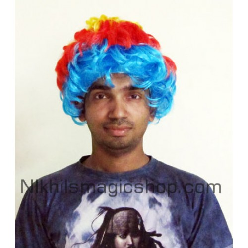 Clown Wig Colored