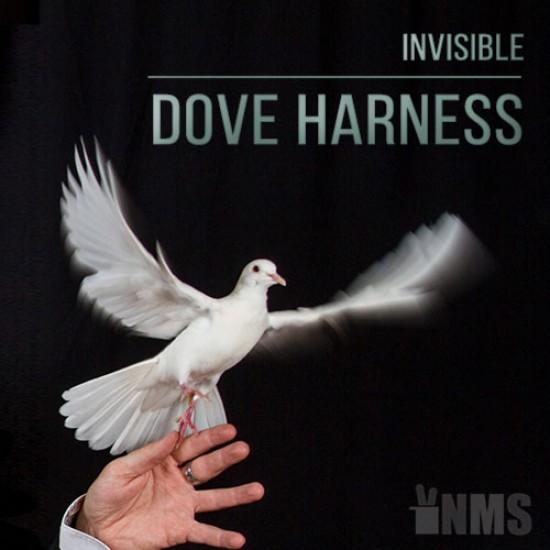 Invisible Dove Harness