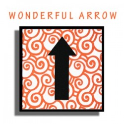 Wonderful Arrow